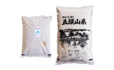 B-19. 阿賀野市産玄米・白米セット