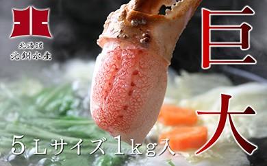[Ho205-C048]【新物】本ずわいがにの蟹ツメ【超超特大】1kg入