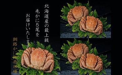 [Ka403-D030]【浜茹で!】ボイル毛ガニ2.0㎏詰め(冷凍)5尾入り