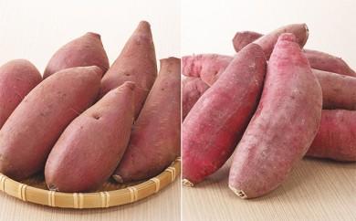 [№5904-0146]無農薬・無化学肥料さつまいも(紅はるか・シルクスィート)食べ比べセット