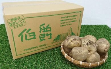 [№5889-0117]北海道なかしべつ産 じゃがいも(伯爵)約20kg