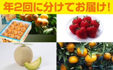 [№5651-0449]季節のふるさと便り 南房総とみうら「果物セット」定期便(年2回)