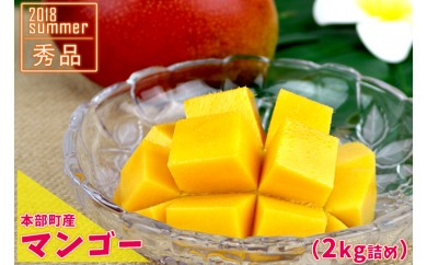 【本部町産】マンゴー(秀品)(2kg詰め)