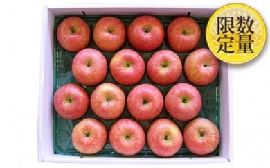 [№5805-1656]山形産 葉とらずふじりんご約10kg※クレジットのみ