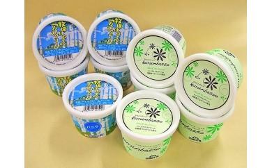函館牛乳 函館アイスセット(2種×各5個)[404304]