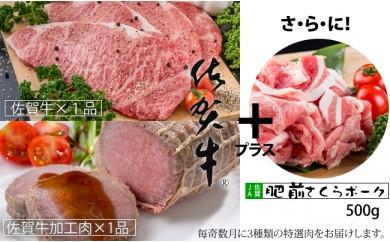 G-202 【定期便】佐賀牛プレミアムwith肥前さくらポーク