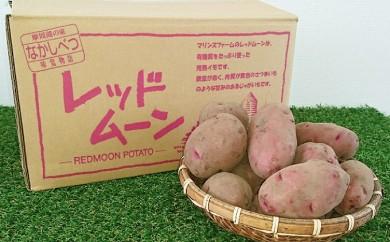 [№5889-0118]北海道なかしべつ産 じゃがいも(レッドムーン)約20kg