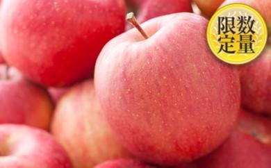 [№5805-1301]山形市産 甘熟蜜入りふじりんご