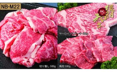 【NB-M22】根羽こだわり和牛セット(サーロイン400g、切り落とし500g、焼肉500g)