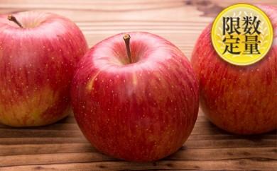 [№5805-1639]♪フルーツ王国山形♪サンふじりんご たっぷり約15kg