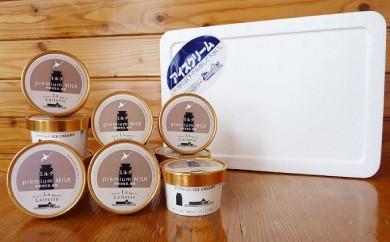 [№5889-0177]北海道 プレミアム アイスクリーム(ミルク)10個
