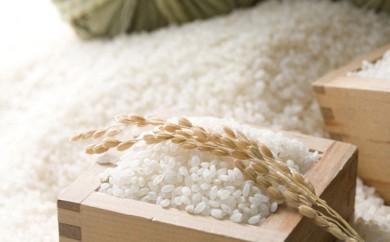 [№5805-1241]29年産・山形産太古自然米はえぬき5kg