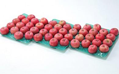 [№5805-1674]♪フルーツ王国山形♪ふじりんご たっぷり15kgご自宅用