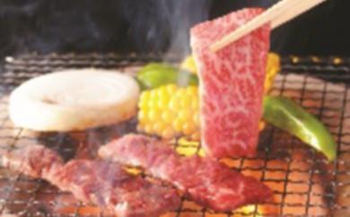 [№5805-1127]山形牛焼肉Aセット