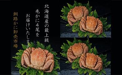[Ka403-D031]【浜茹で!】ボイル毛ガニ2.0㎏詰め(冷凍)4尾入り