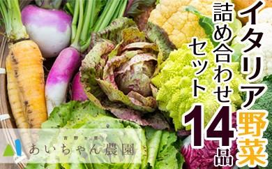 季節のイタリア野菜詰め合わせセット14品(西洋野菜・珍野菜)