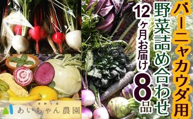 季節のバーニャカウダ用野菜詰め合わせセット8品【頒布会12回】(イタリア野菜・珍野菜など)