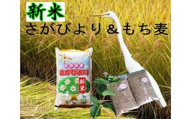 A5-040【新米】美味しさ自慢!8年連続「特A」さがびより5kg【もち麦2袋つき】