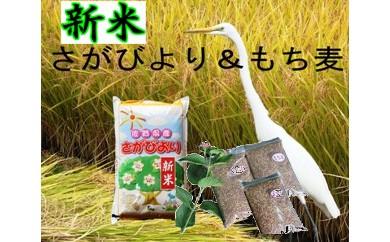 B5-014【新米】美味しさ自慢!8年連続「特A」さがびより10kg【もち麦3袋つき】