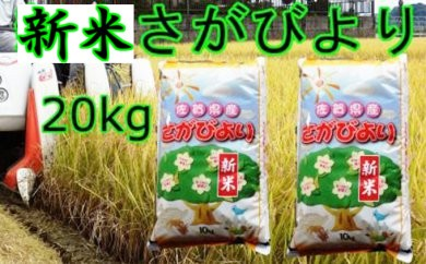 C-041【新米】美味しさ自慢!2017年産米さがびより20kg