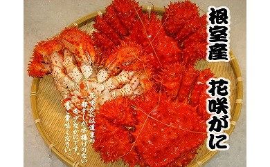CB-57003 【北海道根室産】花咲ガニ4尾(計2kg以上)[405507]