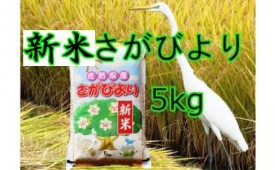 A-084【新米】美味しさ自慢!2017年産米さがびより5kg