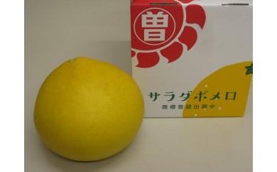 CM41 三豊市オリジナル文旦「サラダポメロ」【35p】