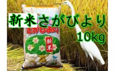 A5-039 【新米】美味しさ自慢!8年連続「特A}2017年産米さがびより10kg