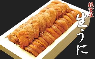 CA-04016 【北海道根室産】エゾバフンウニ折110~120g前後×1折(黄~オレンジの色味になります。)[405501]