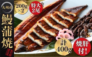 A1-01-01 ふっくらとろける九州産うなぎ蒲焼2尾と焼肝の贅沢セット