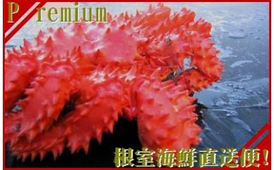 CC-70006 【北海道根室産】チルド便発送!花咲ガニ2尾(計2.5kg前後)[406434]