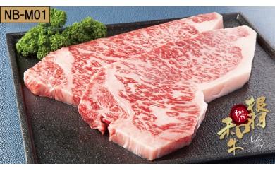 【NB-M01】根羽こだわり和牛 サーロインステーキ 2枚(400g)