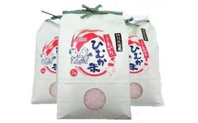 A-22  ひむか特別栽培米6kg(こしひかり)