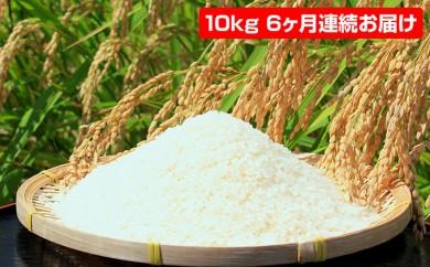 [№5728-0150]【6ヶ月連続】若狭富士の米10kg