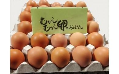 A-49 麦畑自然農場 平飼い卵「むかしむかし卵」25個   「3,000P」