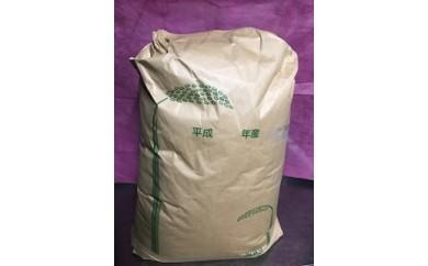 神渕の米こしひかり(30kg×1袋)!