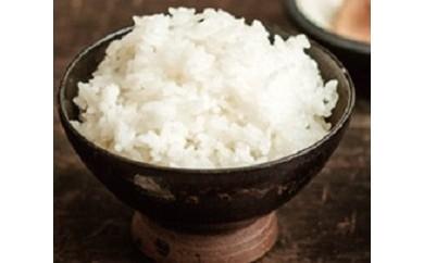 1-232 あいちのかおり特別栽培米 白米10kg