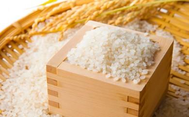 [№5991-0217]【福島県産】 29年度産 コシヒカリ 5kg×3袋 (合計15kg発送)