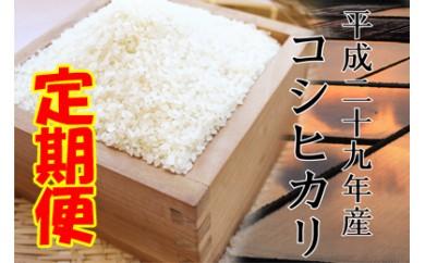 平成29年産米 鮭川産「コシヒカリ」定期お届け便