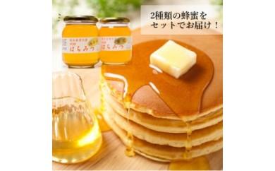 №90-12蜂蜜セット