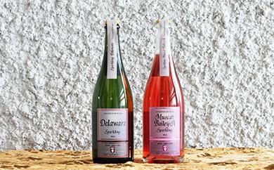 【クリスマス限定】朝日町ワイン スパークリングワイン(辛口)セット