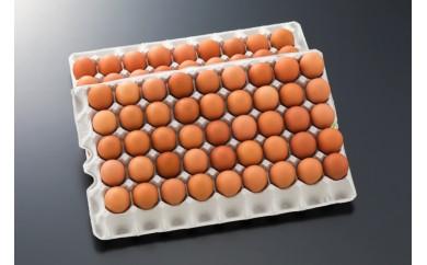 T60(5)-2901_新鮮赤卵きみ恋卵の定期便(5ヶ月)