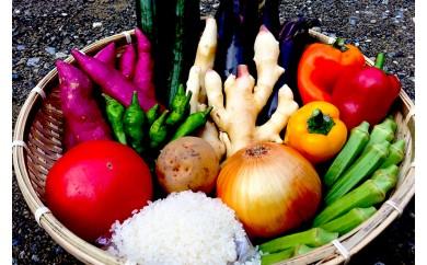 南国土佐の新鮮お野菜とお米・ドレッシング3種セット