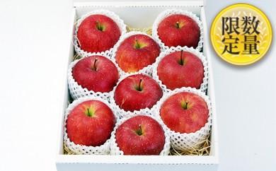 [№5805-1791]山形県産ふじりんご特秀品約3kg ※クレジットのみ
