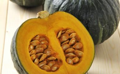 [№5783-0197]月形町産のかぼちゃ「北のこころ」約10kg