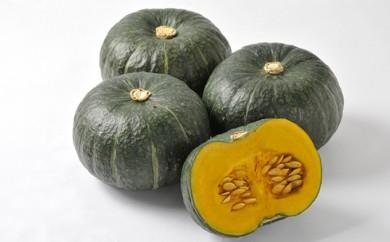 [№5783-0196]月形町産のかぼちゃ「虹ロマン」約10kg
