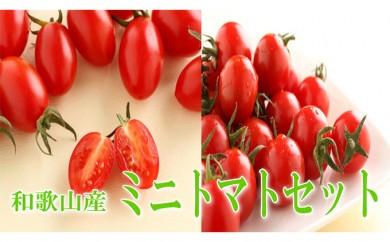 [№5910-0116]ミニトマトセット【 キャロルセブン・アイコ】 2kg 和歌山産