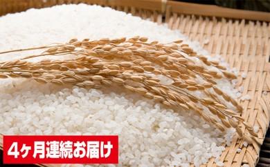 [№5783-0221]北海道産ゆめぴりか20kg 4ヶ月連続お届け