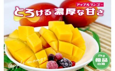 【2018年発送】沖縄県産マンゴー 4玉~6玉(約2kg)【白箱・優品】