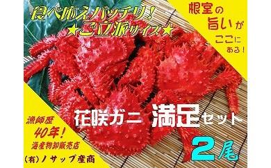 CB-03017 【北海道根室産】花咲ガニ2尾(計1.2kg以上)[413458]